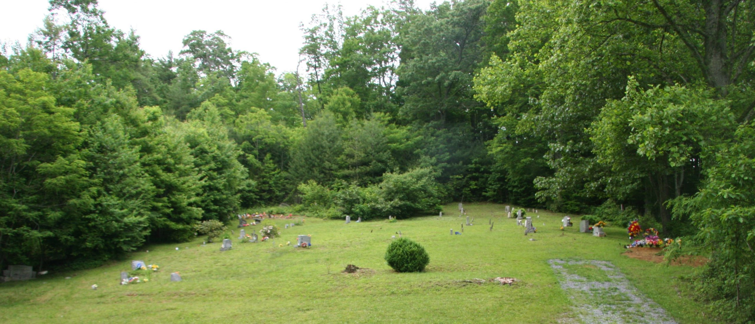 Birchfield Cemetery Roan Mountain Tennessee Dark Hollow Road
